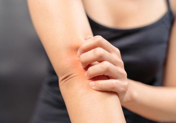 Pitta Hastalıkları Nelerdir?