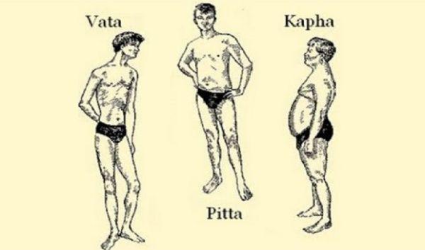 Ayurveda Vücut Tipi Vata Pitta Kapha