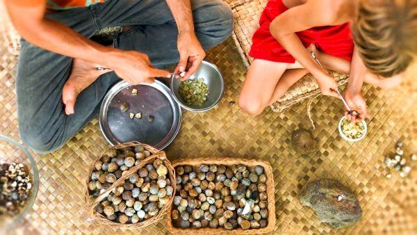 Kukui Nut Yağı Faydaları